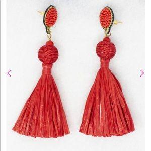Pink Lily Boutique tassel earrings!